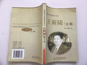王新陆文集/全国高等中医院校校长论丛