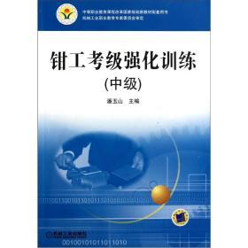 钳工考级强化训练(中级)