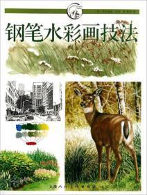 钢笔水彩画技法:西方经典美术技法译丛