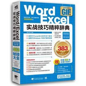 Word Excel 实战技巧精粹词典