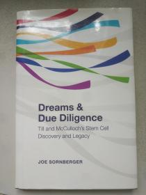 dreams due diligence