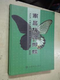 南昌梅岭蝴蝶