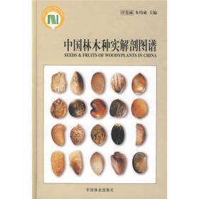 中国林木种实解剖图谱 任宪威,朱伟成 中国林业出版社