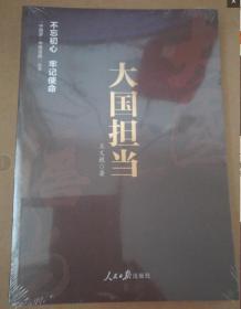 正版未开封:《中国梦·中国道路》丛书—大国担当9787511550255