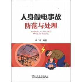 供电企业常见法律风险防范与处理丛书:人身触电事故防范与处理