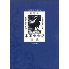 新世纪中国小小说精选(全二册)