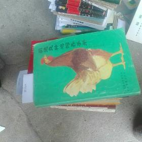 引进良种鸡饲养手册