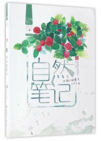 自然笔记(Vol.1.8):微小的春天