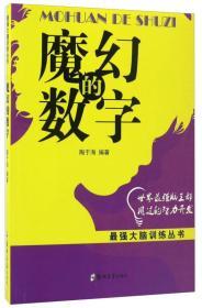 魔幻的数字/最强大脑训练丛书