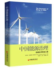 中国能源治理:低碳经济转型之路