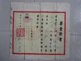 1955年河北省怀安县怀安城高级小学毕业证书(背面是学习成绩表)