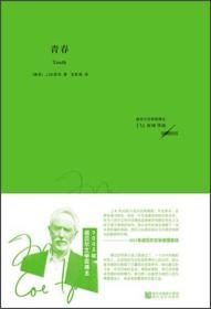 保证正版 青春 (南非)库切 浙江文艺出版社