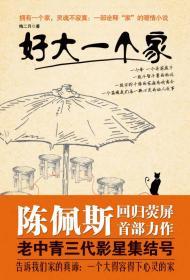 中国当代长篇小说: 好大一个家