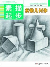 基础美术技法正规系统训练 素描起步·素描几何体