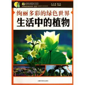 绚丽多彩的绿色世界:生活中的植物
