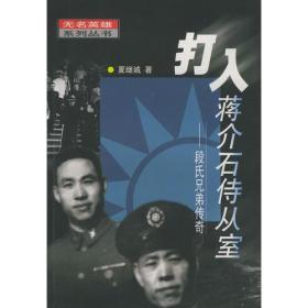 打入蒋介石侍从室——段氏兄弟传奇(无名英雄系列丛书)