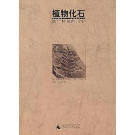 植物化石:陆生植被的历史