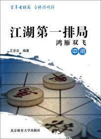 江湖第一排局:鸿雁双飞(中册)