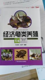 经济龟类养殖