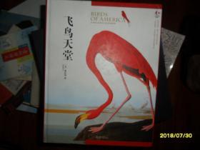 飞鸟天堂(绘画本)