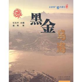 让世界近看内蒙古——黑金乌海(彩图)