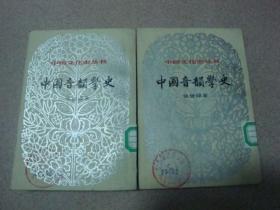 中国音韵学史上下(中国文化史丛书)