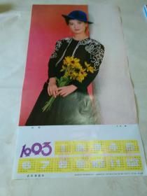 1993年年历画:秋菊