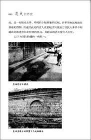 遗失的历史 专著 太原市老城区濒危文物古建调查 益暖中华·保护历史的足