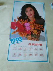 1993年年历画:影视新星叶雨