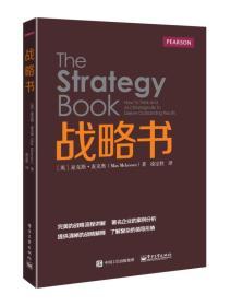 战略书_9787121263385