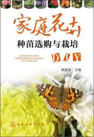 家庭花卉种苗选购与栽培DIY