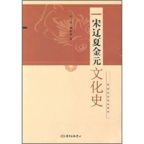 宋辽夏金元文化史