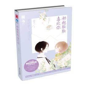 好想轻轻喜欢你 品丰二手 河北人民出版社 9787202095287  青春文