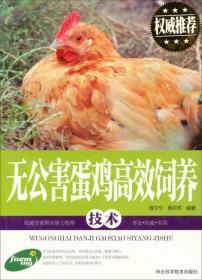 无公害蛋鸡高效饲养技术