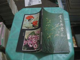 赏花与养花   货号8-6