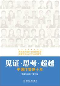 见证·思考·超越:中国IT管理十年