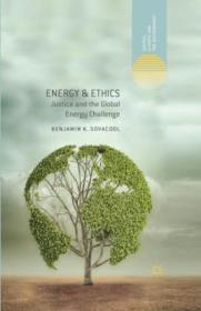 Energy & Ethics: Justice And The Global Energy Challenge (energy  Climate And The Environment)