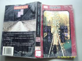 天狼星下:中国第一百万零一个盲流的历程