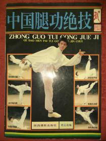 绝版经典:中国腿功绝技(各大门派腿法精髓,77种名家腿法)