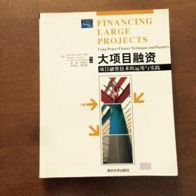 大项目融资:项目融资技术的运用与实践(原版旧书)