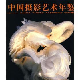 中国摄影艺术年鉴--2009(创史以民,藉史以图,为鉴以史)