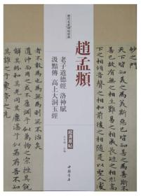 历代名家碑帖经典:赵孟頫 老子道德经 洛神赋 汲黯传 高上大洞玉经