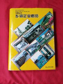 马鞍山市乡镇企业摡览(精装护封16开,1996年1版1印)