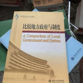 比较地方政府与制度/21世纪政治学系列教材