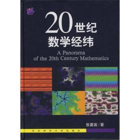 20世纪数学经纬  正版