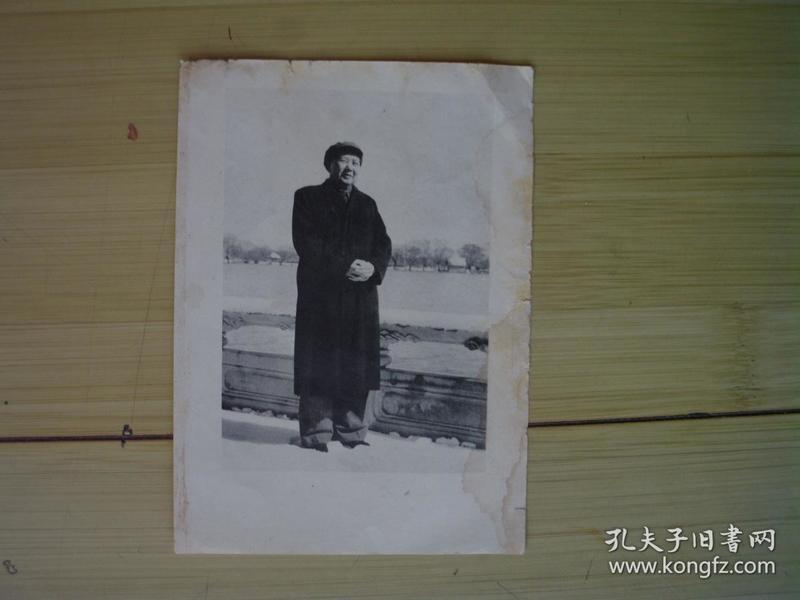 文革宣传画 毛主席站在雪地像