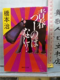 青春つーのはなに 桥本治 日文原版 64开文库综合 日语正版