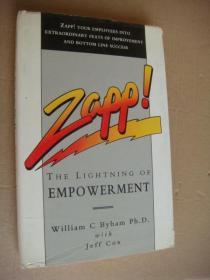 Zapp!the lighting of empowerment 布面精装+书衣