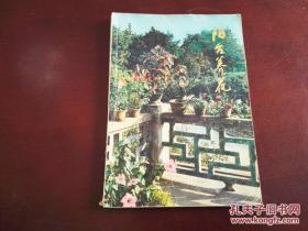 《阳台养花》 1983年2月1版1印