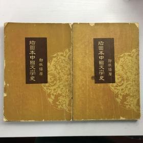插图本中国文学史 存1、2册 陈志群藏书 有藏书章及附注